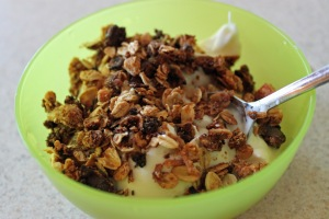 Granola Yogurt Bowl